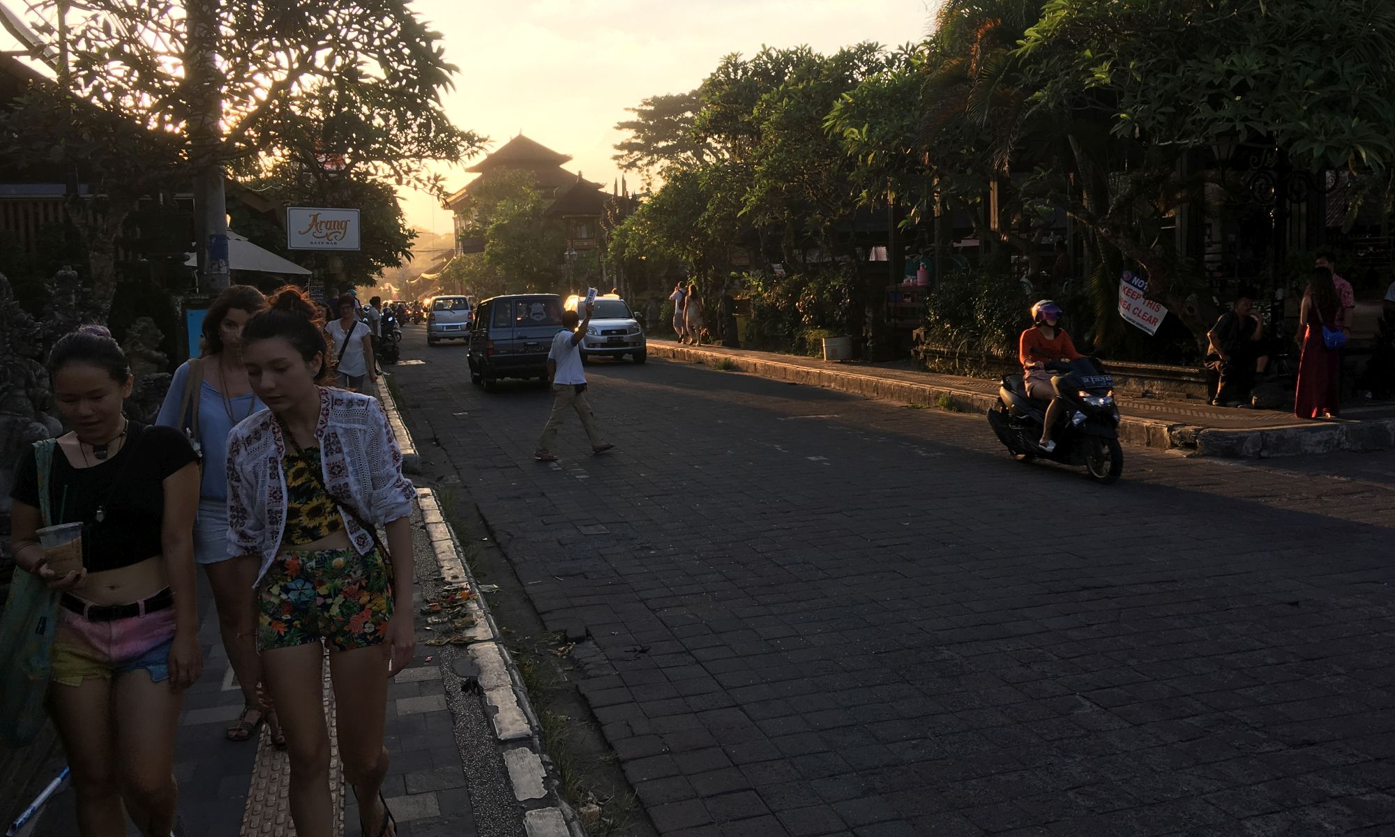 Ubud - Jalan Raya Ubud
