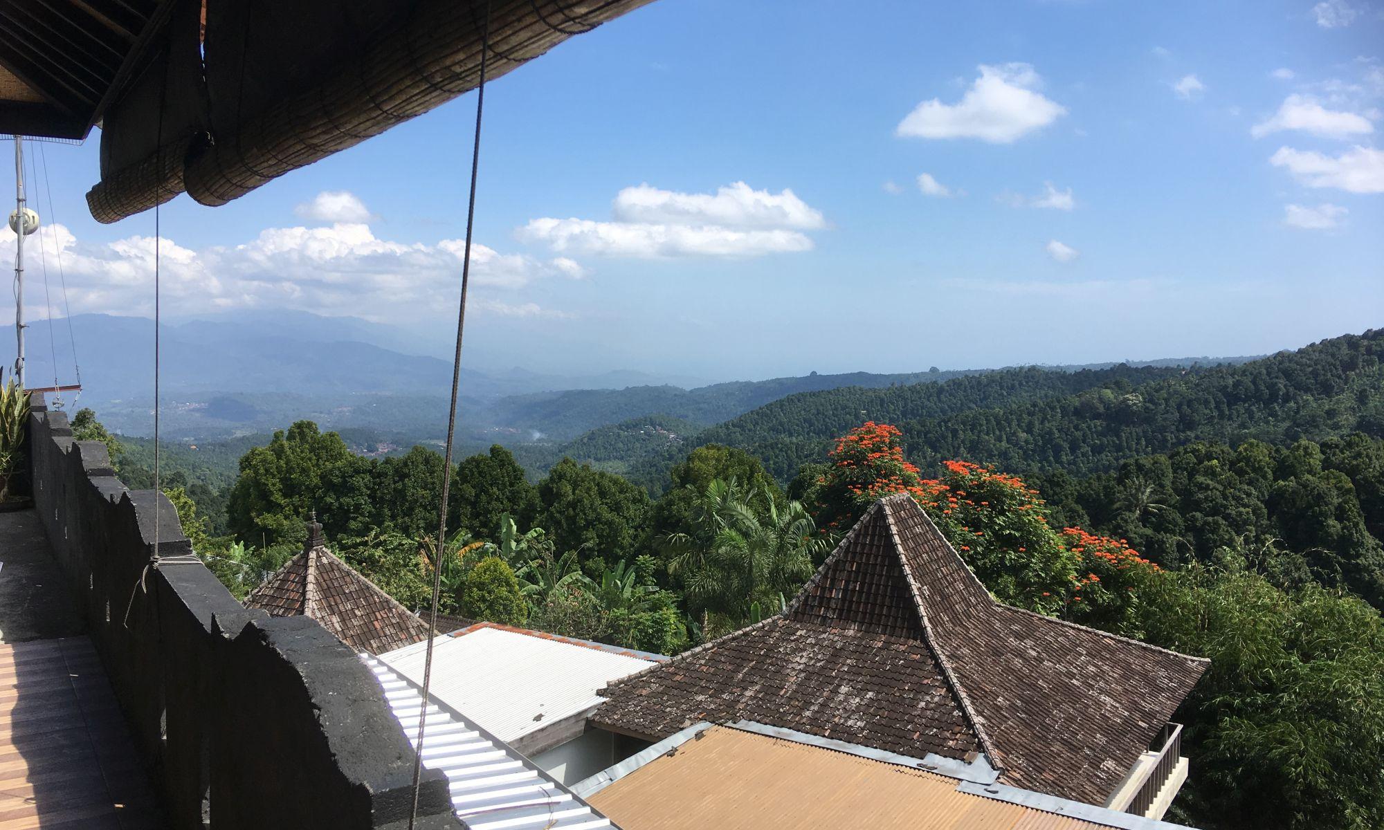 Adila Warung, Munduk - Aussicht von Terrasse