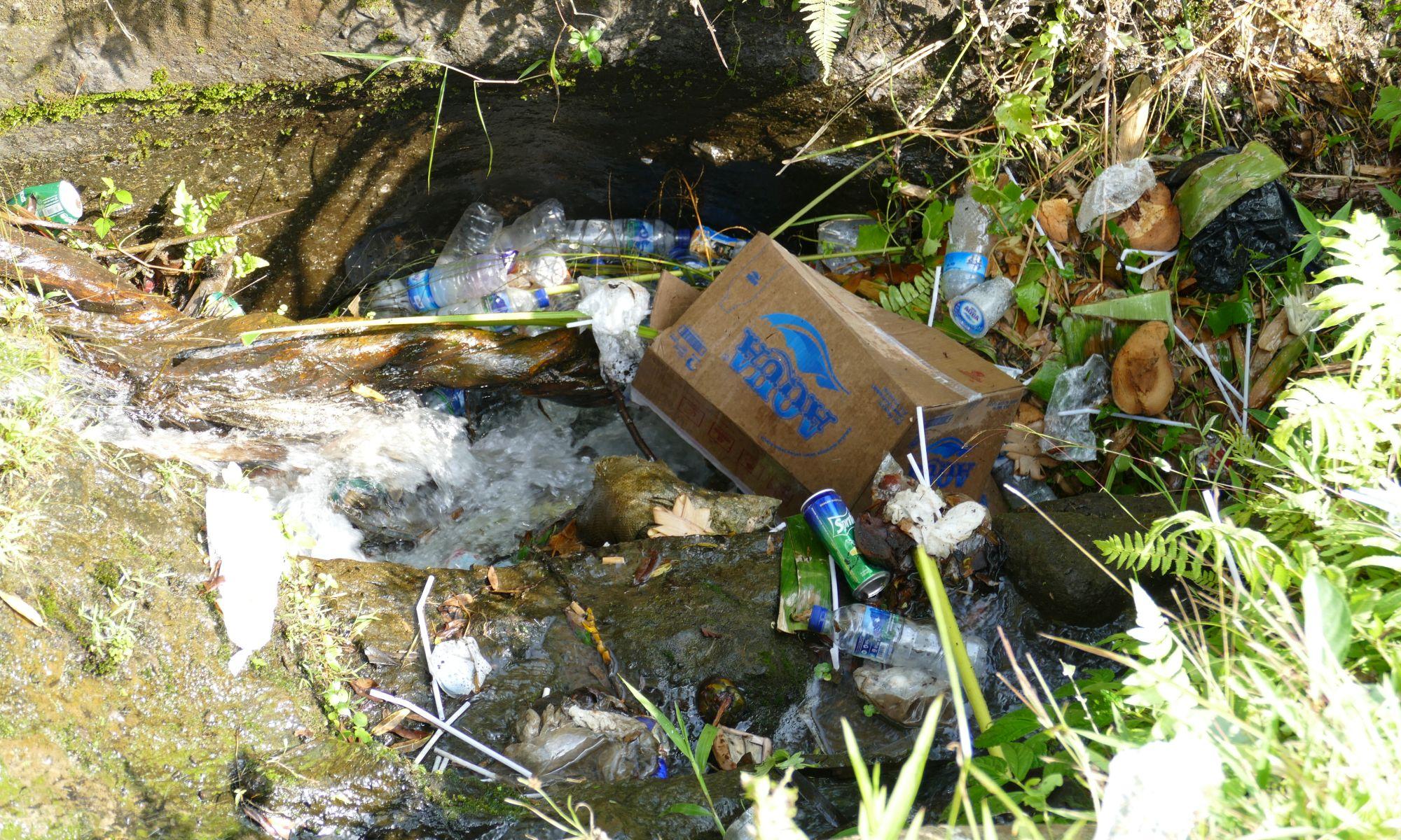 Bachlauf mit Plastikmüll auf Bali