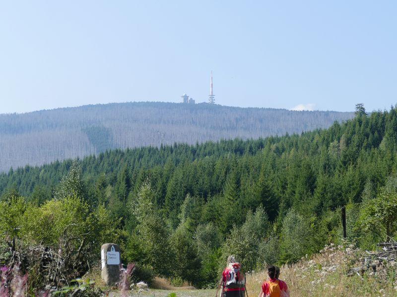 Blick auf Brocken von der Bremer Hütte
