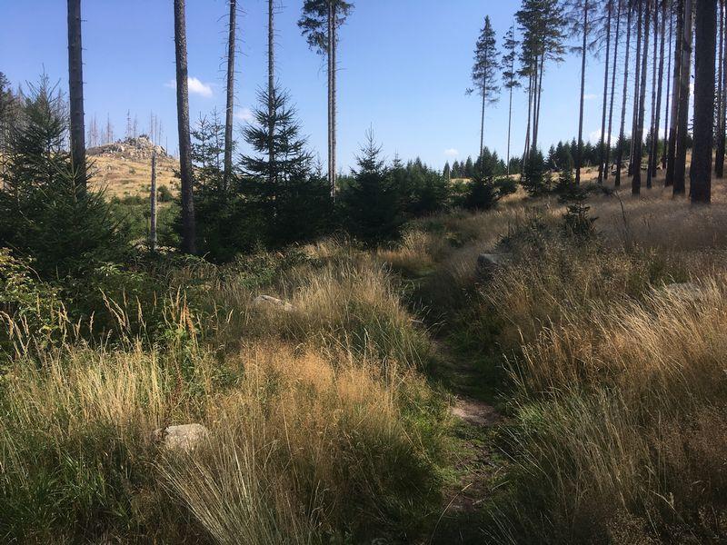 Blick auf Pfortenberg