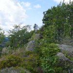 Wanderung zum Scharfenstein (HSP on tour)