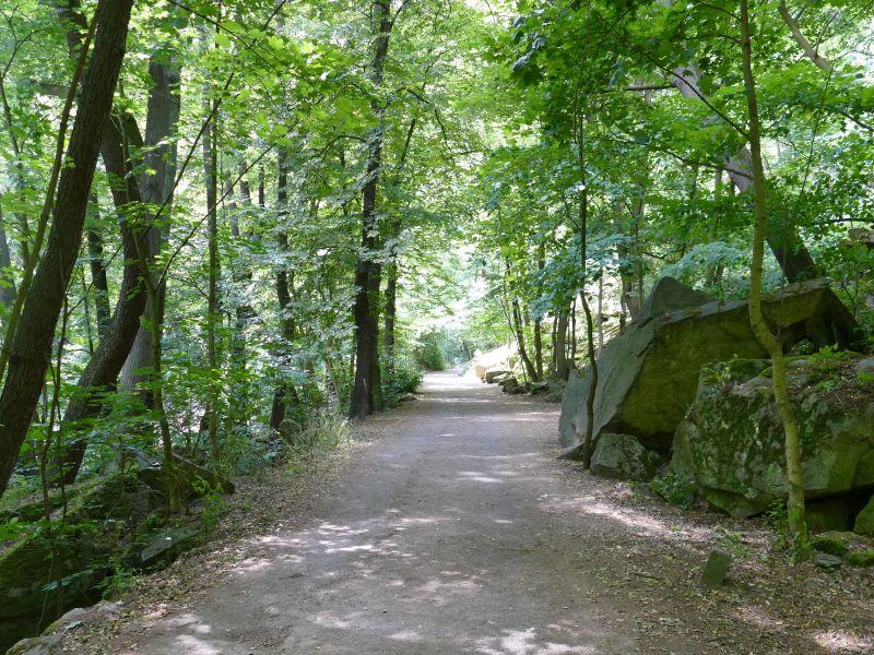 Bodetal - Weg an der Bode