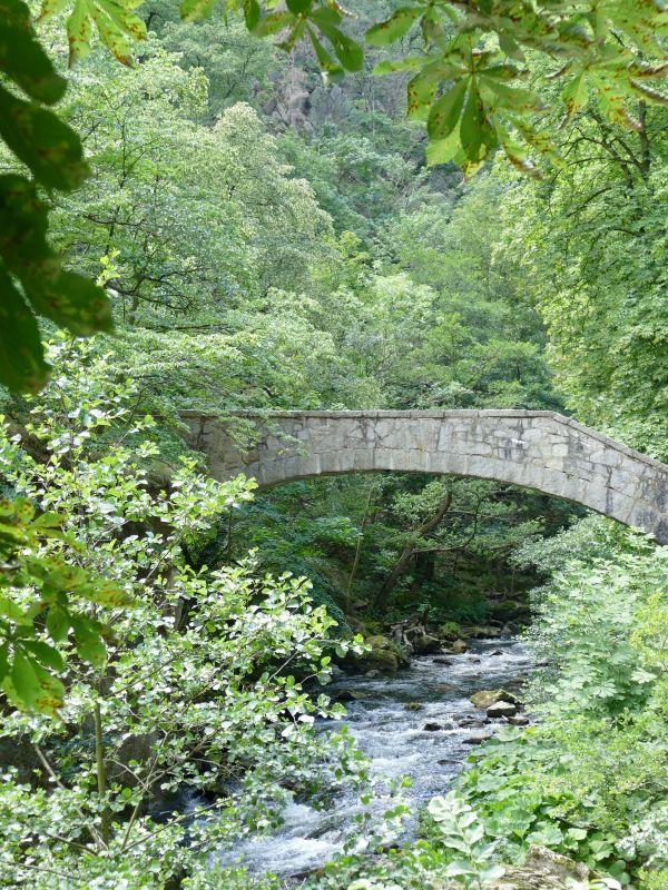Bodetal - Hirschgrund Jungfernbrücke