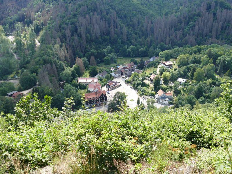 Weißer Hirsch - Blick auf Treseburg
