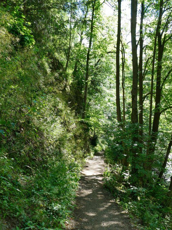 Bodetal - Rückweg nach Thale