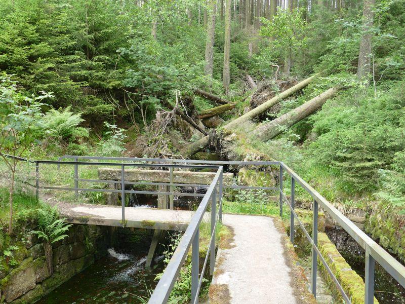Dammgrabenweg - Kellwasser