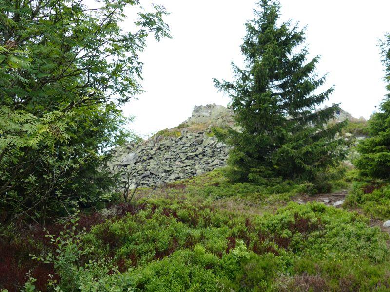 Oberer Bruchbergweg - Blick auf Wolfswarte