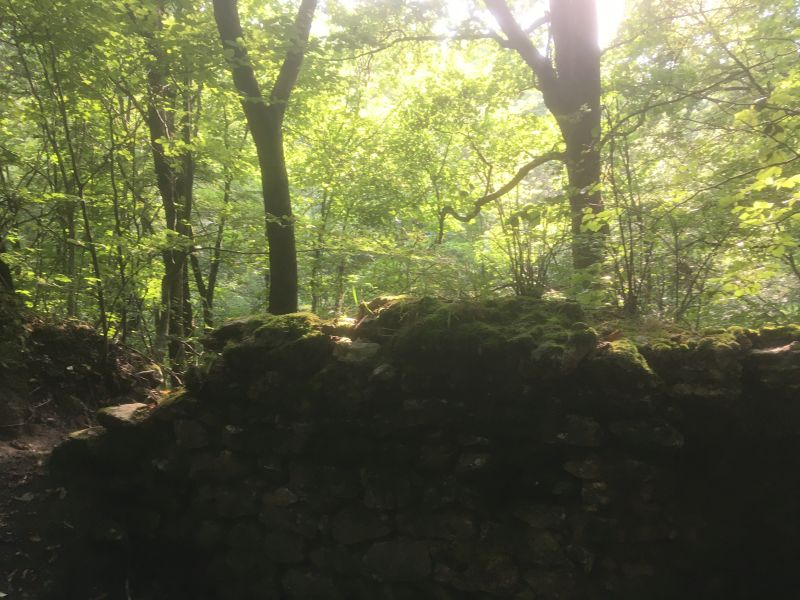 Volkmarskeller - Klosterruine